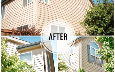 James Hardie Fiber Cement Siding: ColorPlus vs Primed